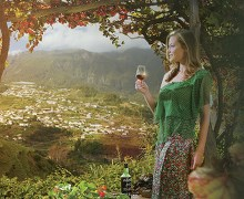 Madeira Wines Route