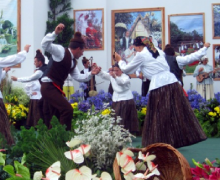 36th Regional Folklore Festival - 24 Hours of Dancing