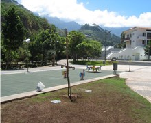 Garden of Indigenous Plants of Madeira