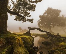 Photography of Madeira wins peninsular edition of
