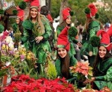 Madeira among the best Christmas markets in Europe