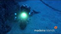 Diving in the Madeira Islands